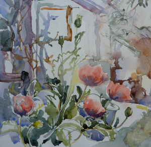 Poppies in the Barn, watercolour
